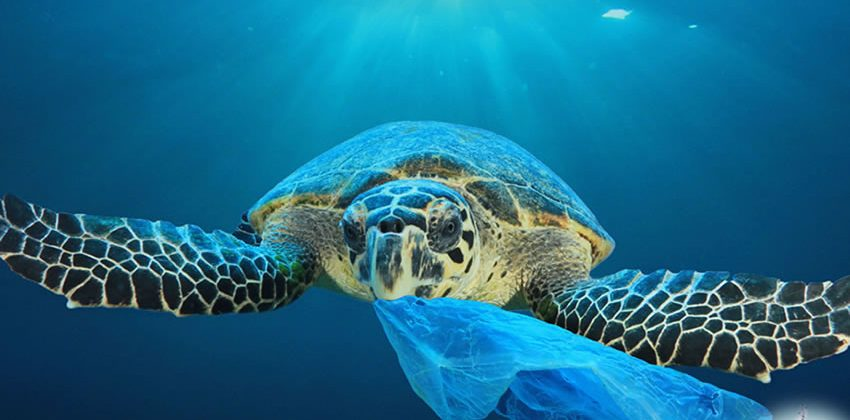 Evitar la fuga de residuos de plástico al océano