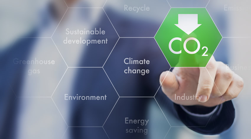 Coprocesamiento Reduce Generación De CO2