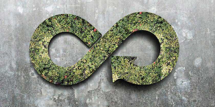 Economía Circular En Reciclaje Y Coprocesamiento.