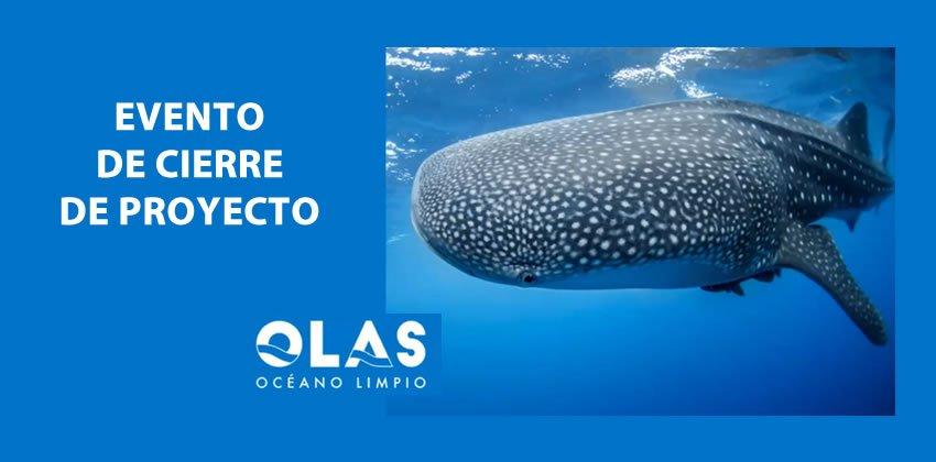 El Proyecto OLAS Cierra Con éxito. Logró Sus Objetivos Para Concientizar A Las Población De Quintana Roo De La Importancia De Controlar Residuos Sólidos En Tierra Para Que Estos No Lleguen Al Océano.